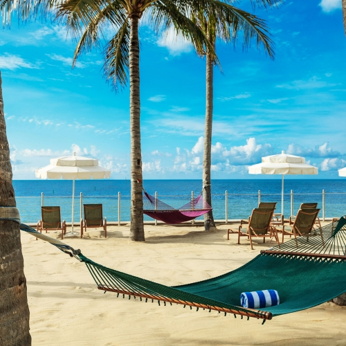 A green hammock hanging between palm trees on the beach.
