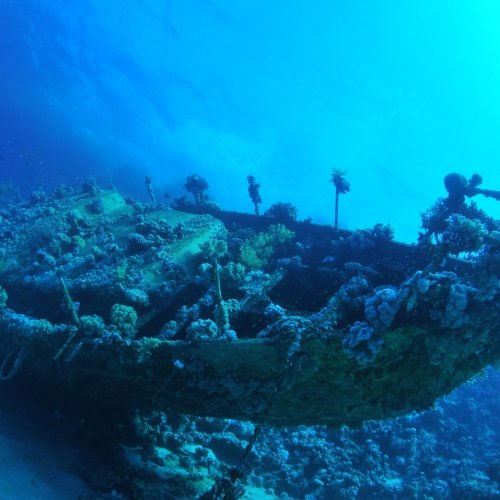 Ancient shipwreck sitting at the bottom of the ocean floor.