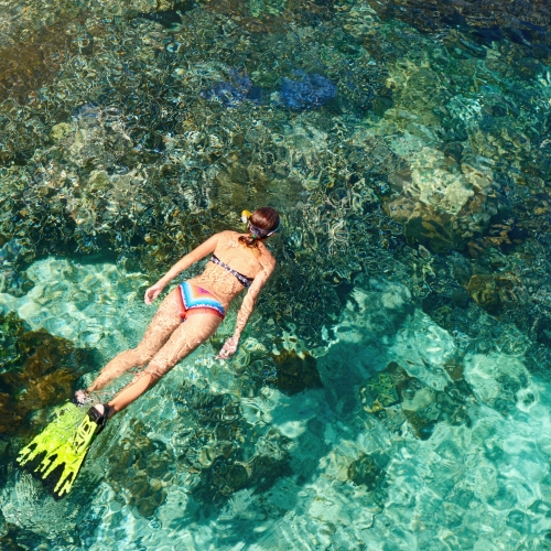 Woman in swimsuit snorkeling in clear sea above coral reef on sunny day.