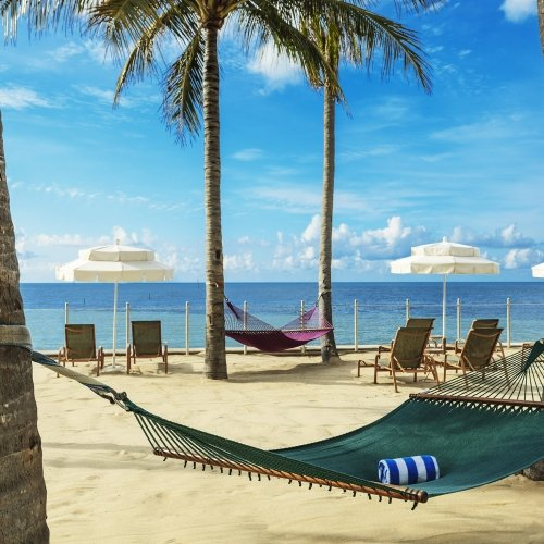Hammock tied between two palm trees, overlooking the ocean.