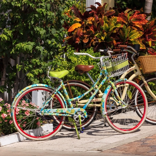 A green and blue bike and a pale yellow bike with baskets sit side-by-side next to a garden.