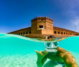 Man snorkeling with Dry Tortugas National Park in the background