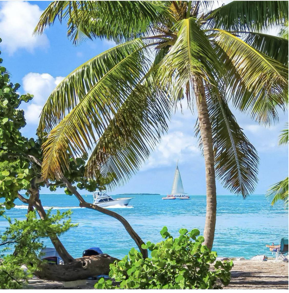 Fort Zachary Taylor Beach, Key West sail boats in the background and palm trees at shore line.